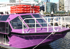 Yarra Cruise Docklands Cruise- Cheap Cruise melbourne